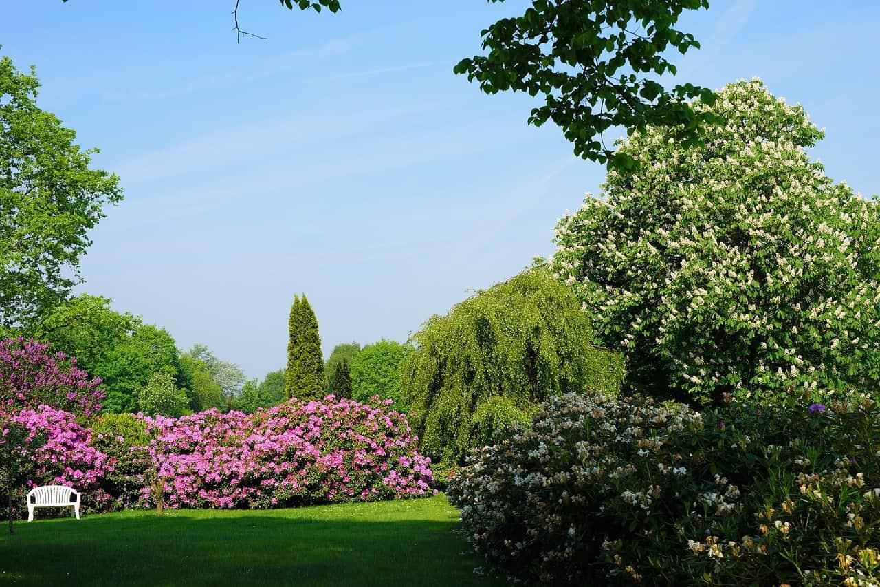 גן ציבורי